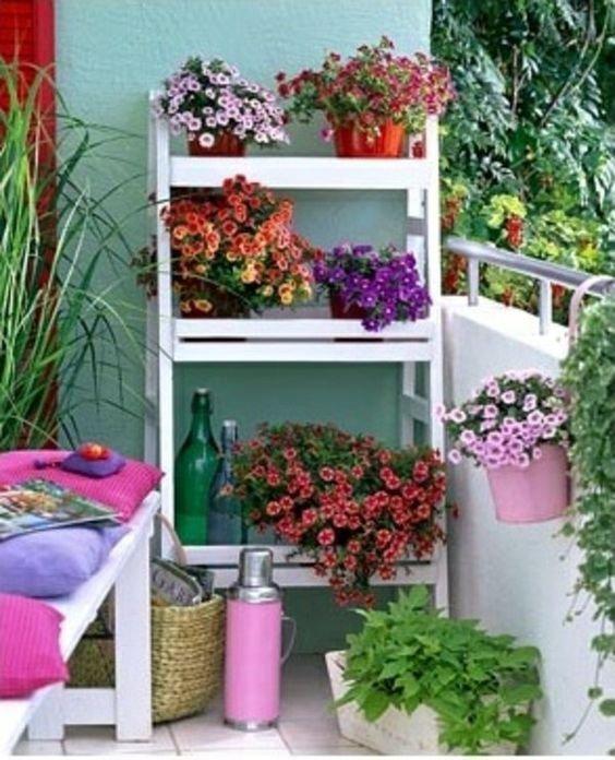 Cvece na terasi